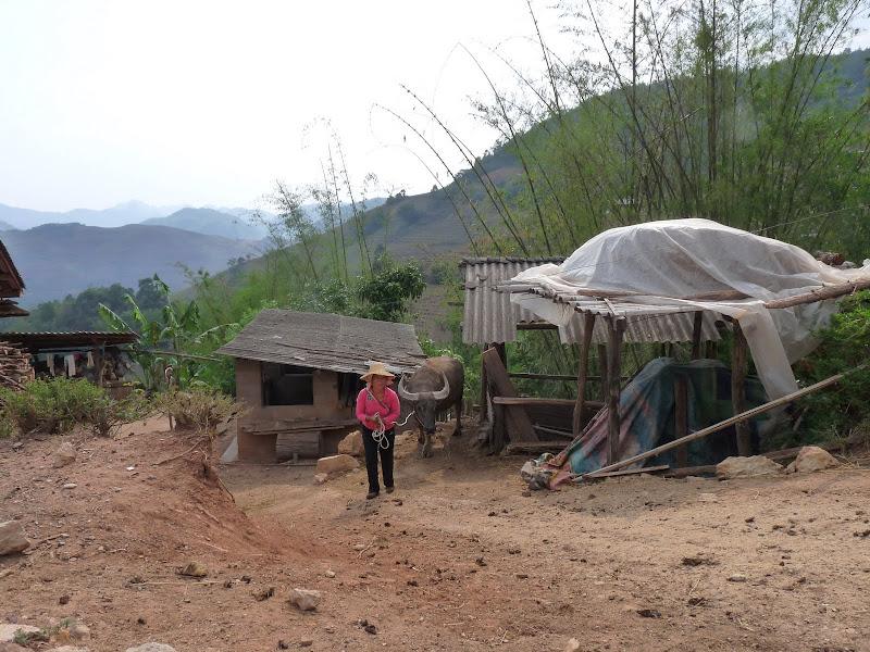 Chine . Yunnan..Galamba, Menglian Album A - Picture%2B456.jpg