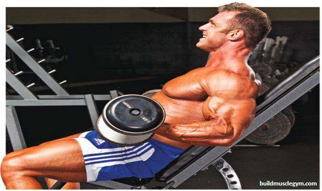 Seated Dumbbell Hammer Biceps Curls