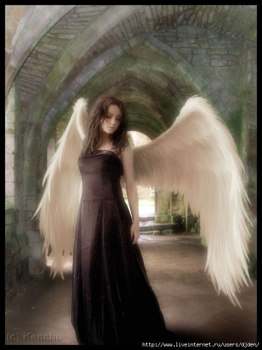 Wandering Angel By Kencho, Angels 1