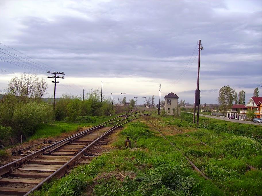 PICT3446.JPG