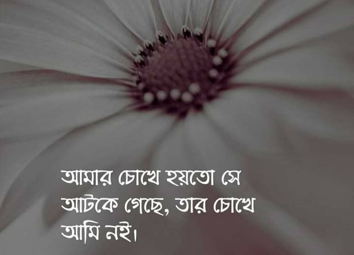 bangla love sms 140, bangla love sms, bangla romantic love sms, bangla love massage, bangla romantic love letter, Bangla Love Poem In Bengali Language,  bengali love sms, bangla romantic sms for girlfriend, bangla premer sms,  bangla love sms.com, bangla love sms new, bangla romantic sms kobita, bangla misti premer sms, valentines day bangla sms, bangla valobashar sms, bangla love sms 2019, Bangla Romantic Love Sms, bangla love quotes, bangla love status,valobashar sms, bd love sms,
