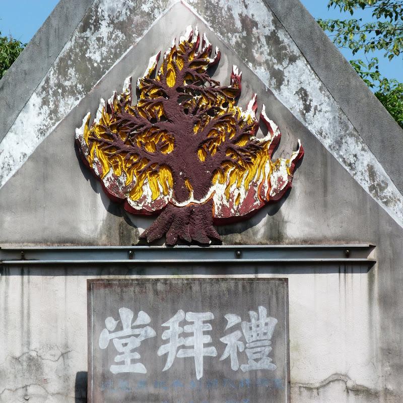 Puli. Divers et Golden Buddha.J 12 - P1170417.JPG