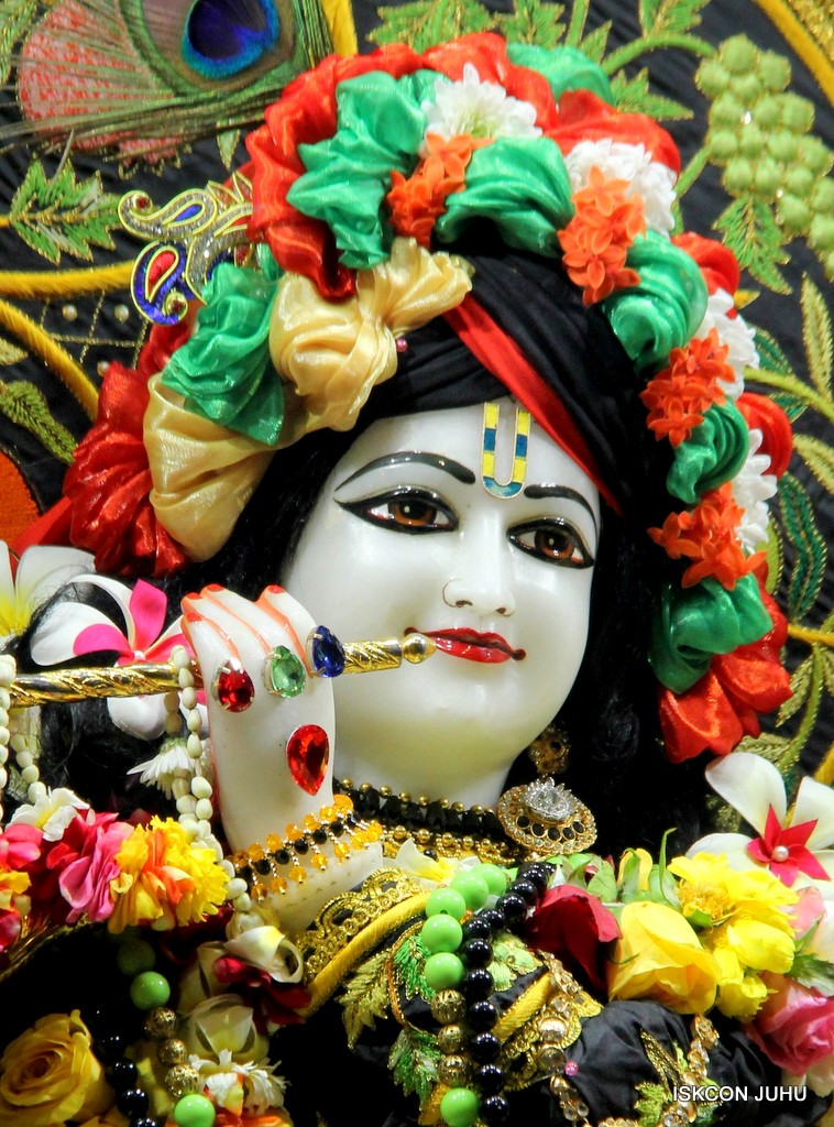 ISKCON Juhu Sringar Deity Darshan on 31st Dec 2016 (16)