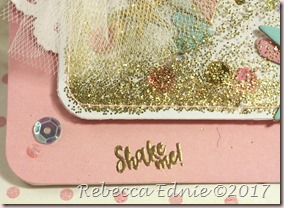 c4c hello gold glitter shaker3