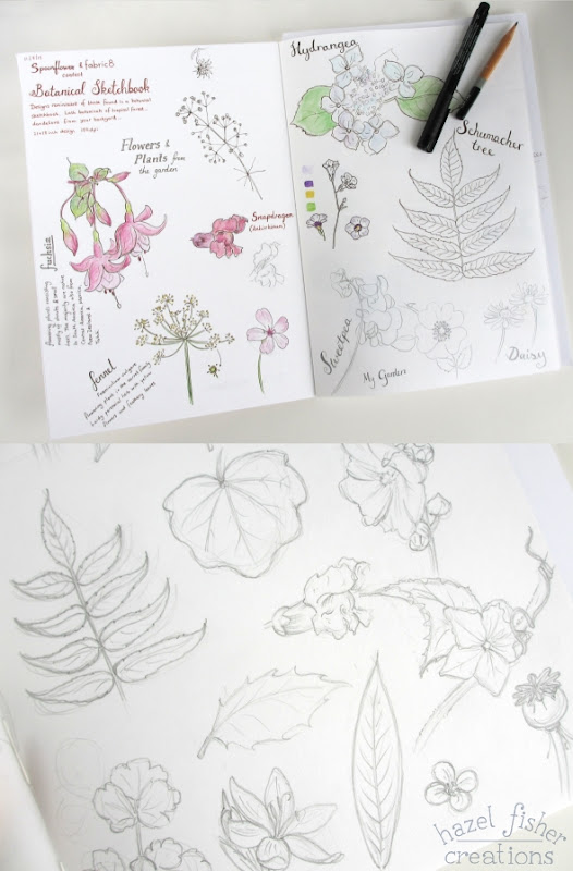 August review Botanical sketchbook wip 2b hazelfishercreations