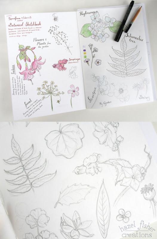 August review Botanical sketchbook wip 2b hazelfishercreations