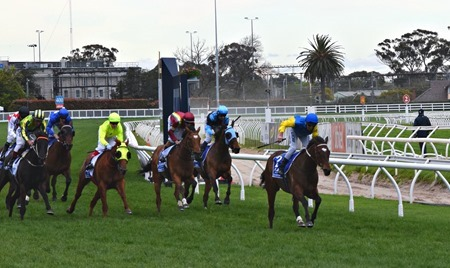 race 8 _finish 2