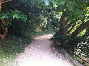 入口からの通路。砂利路