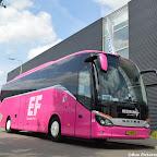 Pink Setra Besseling (6).jpg