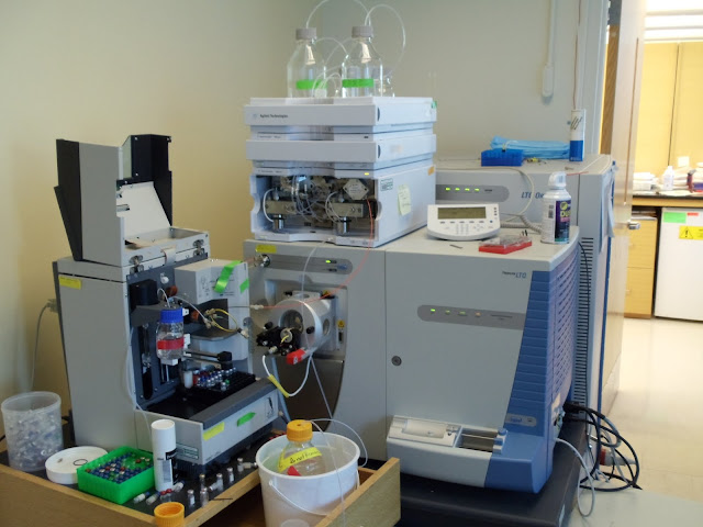 Lab Photos! - DSC00010.JPG