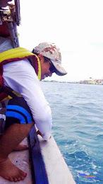 pulau pramuka, 1-2 Meil 2015 fuji  12