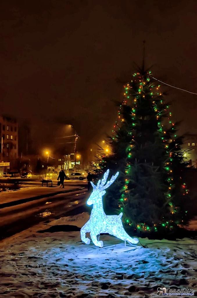 14 декабря 2011 года - олень возле здания Сбербанка