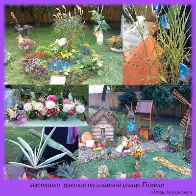 выставка цветов на празднике города Гомеля 2