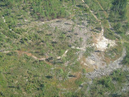Aerial Shots Of Anderson Creek Hunting Preserve - tnIMG_0401.jpg