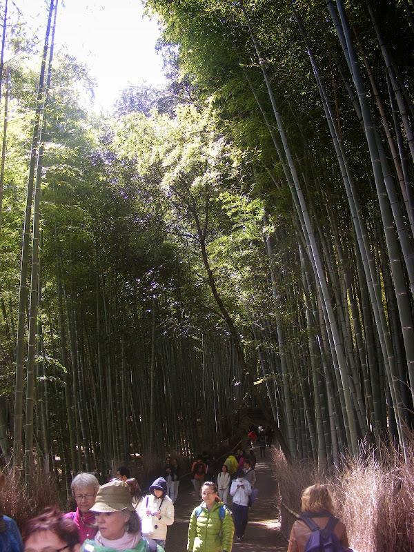 2014 Japan - Dag 8 - julia-DSCF1376.JPG