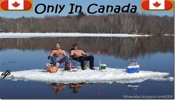 canadain-funny-jokes