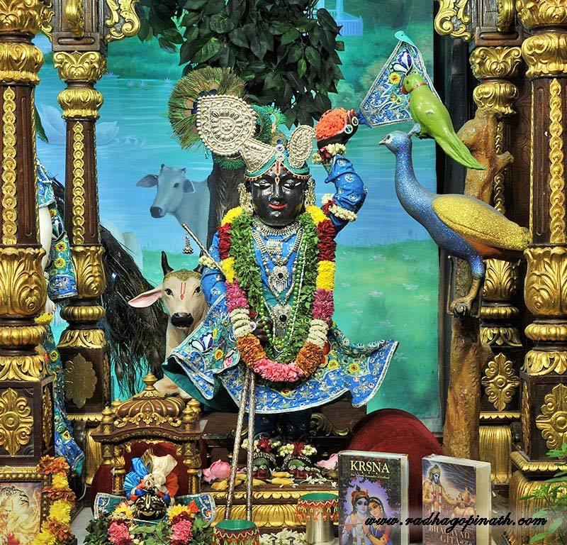 ISKCON Chowpatty Deity Darshan 18 Dec 2015 (3)