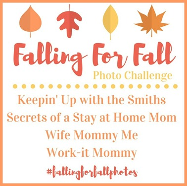 Fallin for Fall 2