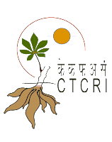 Vacancy of Research Fellow in Tuber Crops Closing date for applications: September 14