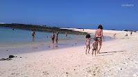 Fuerteventura_El Cotillo_Playa de la Concha