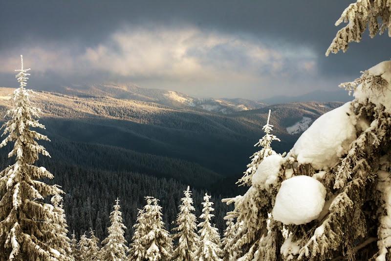 Muntii Vrancei iarna zapada