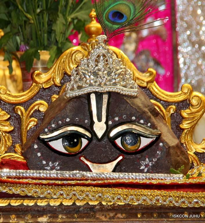 ISKCON Juhu Mangla Deity Darshan 18 Dec 2015 (18)