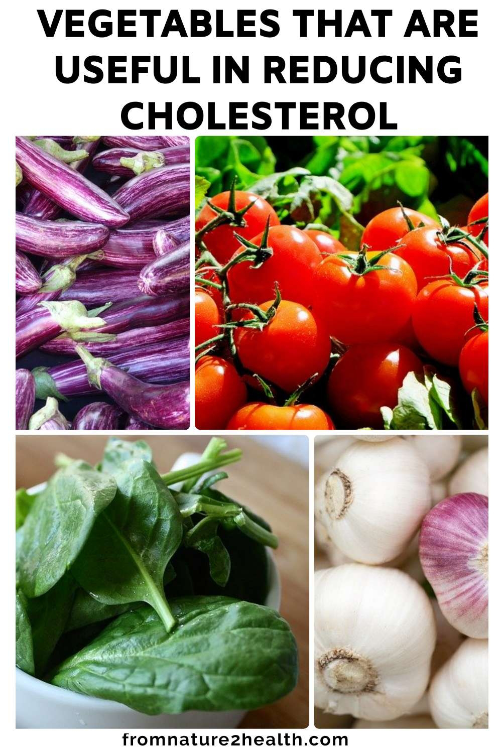 Garlic, Spinach, Tomatoes, Eggplant are Vegetables that are useful in reducing cholesterol