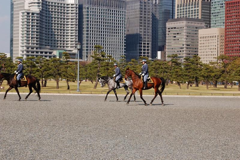 2014 Japan - Dag 11 - jordi-DSC_0990.JPG
