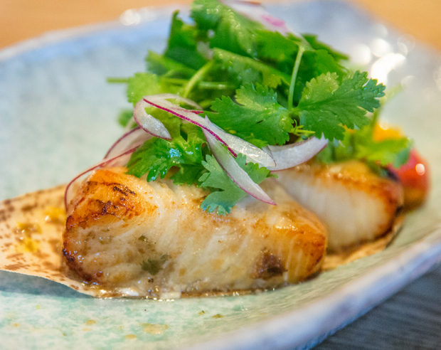 photo of Chilean Seabass Umami-zuke