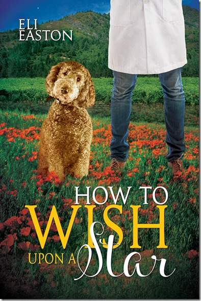 Bk 3 - How To Wish Upon A Star