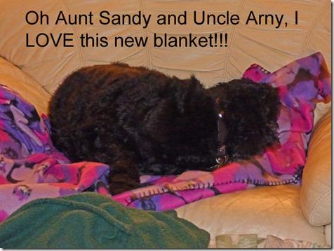 Bubba on Skruffy's Blanket