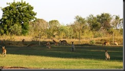 170522 028 Broome Caravan Park