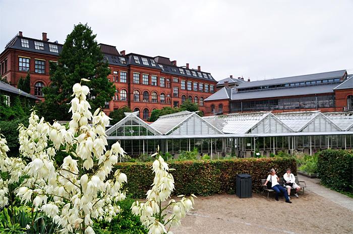 Copenhaga10.JPG