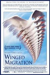 Winged Migration - Những cánh chim di cư