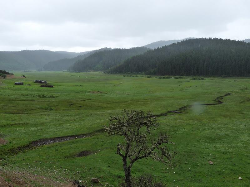 Chine . Yunnan.Shangri la,  POTATSO park - P1260238.JPG