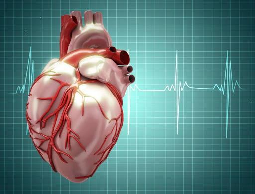 ما لا تعرفه عن القلب