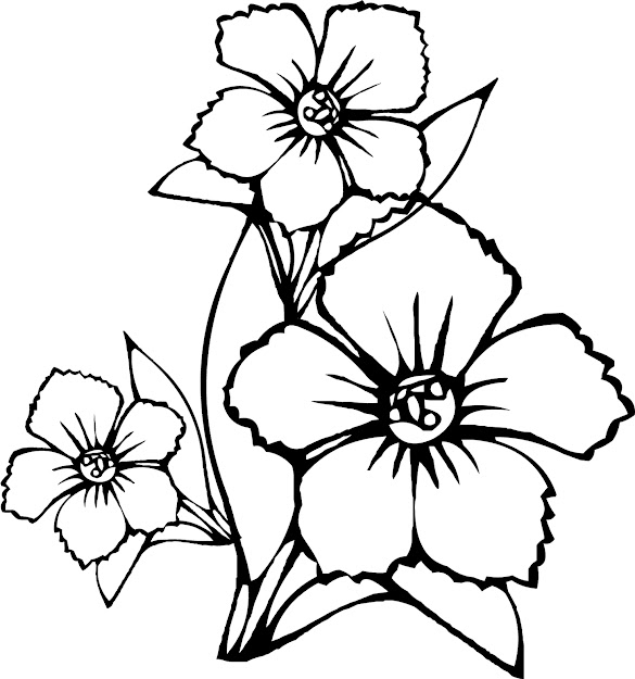 Coloring Pages Of Flowers For Kids Online