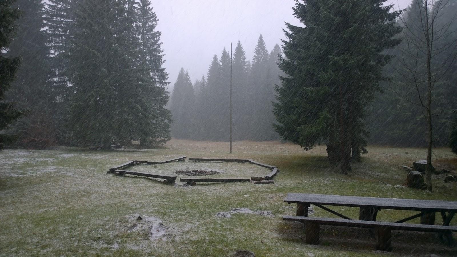 Jesenovanje, Črni dol 2015 - WP_20151121_12_32_28_Pro.jpg