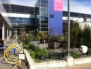 Google_Mountain_View_campus_garden