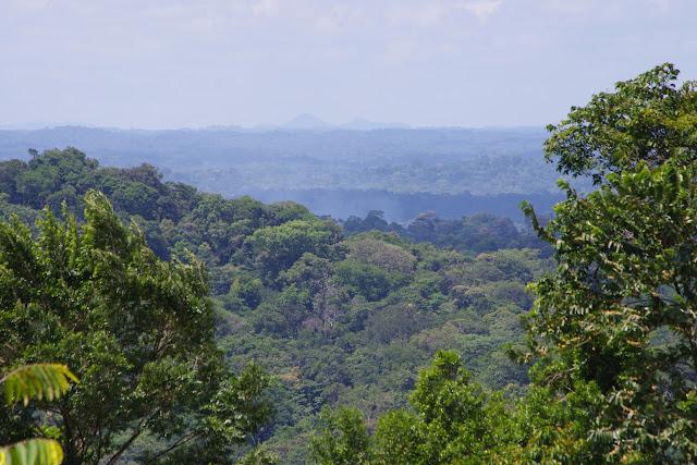 Vue vers le sud-ouest depuis la piste de Coralie, 30 octobre 2012. Photo : J.-M. Gayman