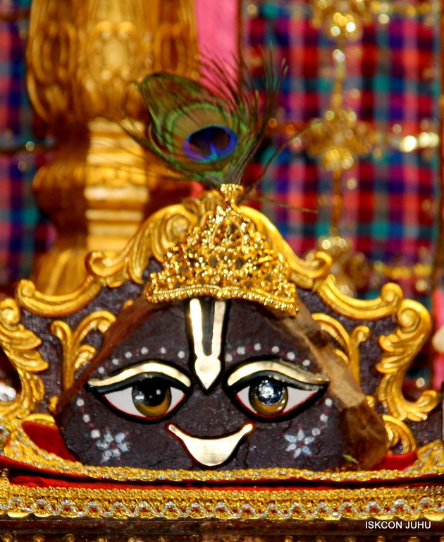 ISKCON Juhu Mangala Deity Darshan 09 April 2016 (26)