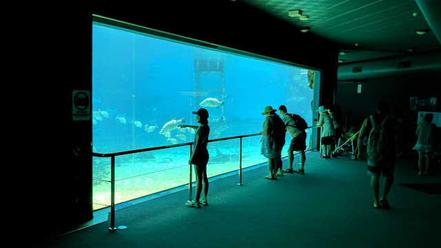 A Sea World aquarium, Australia