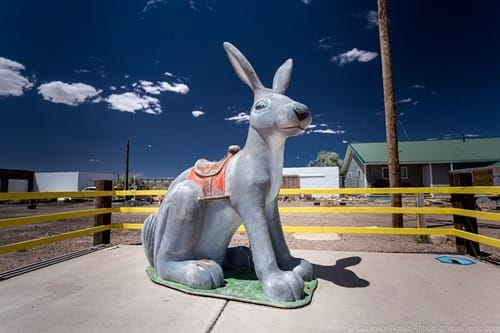 Jack Rabbit Winslow Arizona