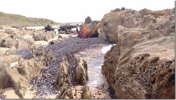 la-pedrera-rochas-junto-mar