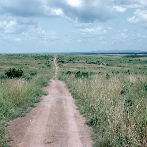 One of Uganda's many National Parks