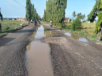 Jalan Lintas Kota Kecamatan Tanah Luas Berlobang Dan Bahayakan Pengendara
