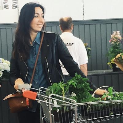 Odling av växter på den gröna balkongen
