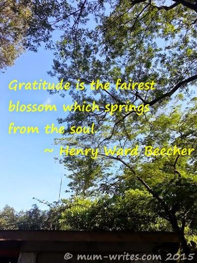 mum's thoughts, Thankful Thursday, gratitude, mum inspires, summer