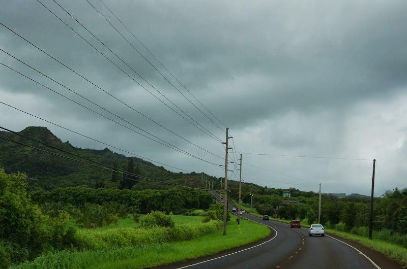06-25-13 Annini Reef and Kauai North Shore - IMGP9261.JPG