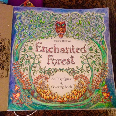 Enchanted Forest Coloring Book Download Michelle Hotchkiss Art Adult